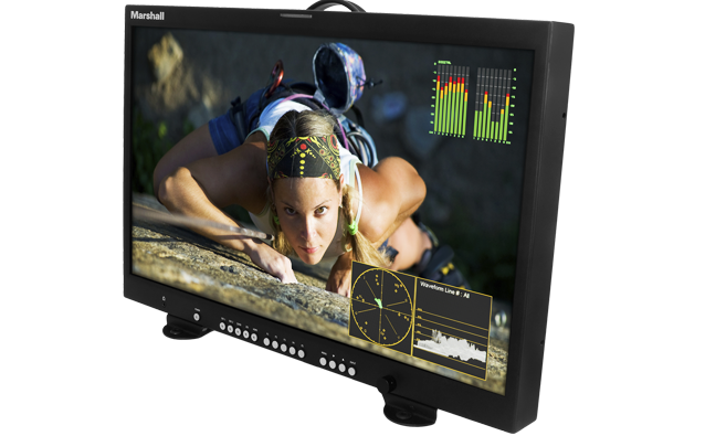 24 inch 4K Master Confidence Monitor
