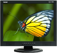 17 inch A/V Monitor with SD-SDI BNC Loop-Through